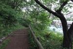 20090505hakuraku8