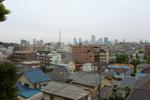 20090505hakuraku9