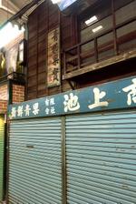 20090505hakuraku3