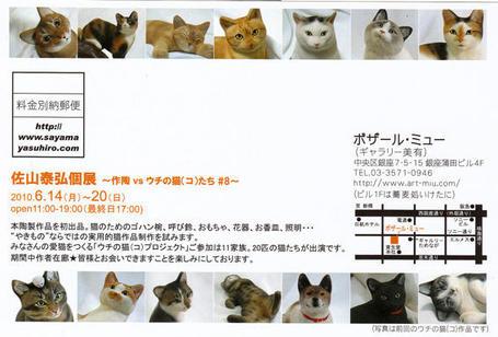 20100609sayama
