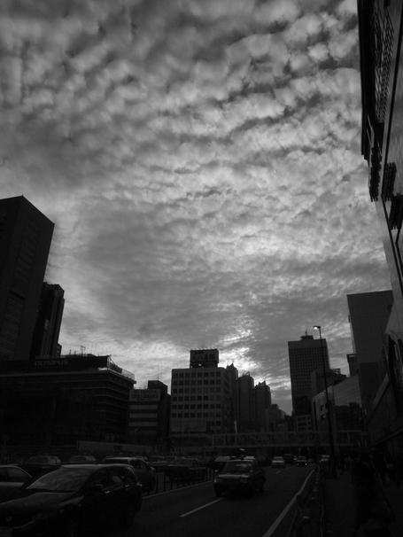 20101016shinjuku_2