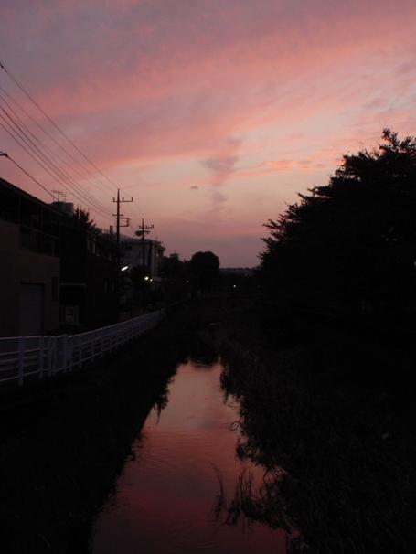 20101017hino_2