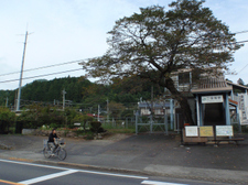 20101017okutama4