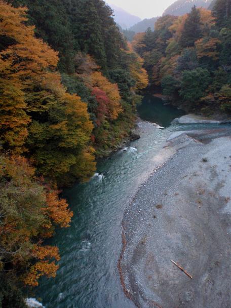 20101114okutama
