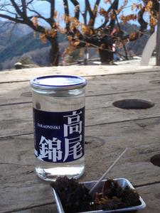 20110130kagenobu