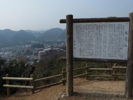 20110206tenranzan