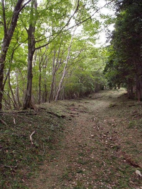20110925kawanoriyama7