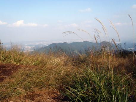 20111009kagenobu2