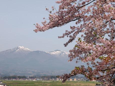 20120428adatarayama2