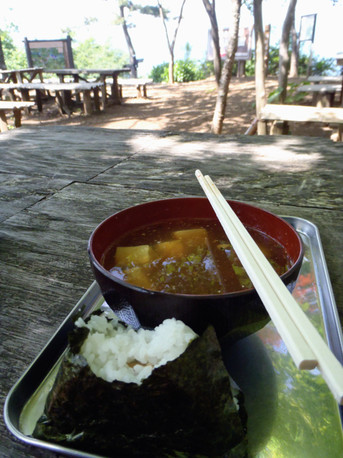 20120527shiroyama1