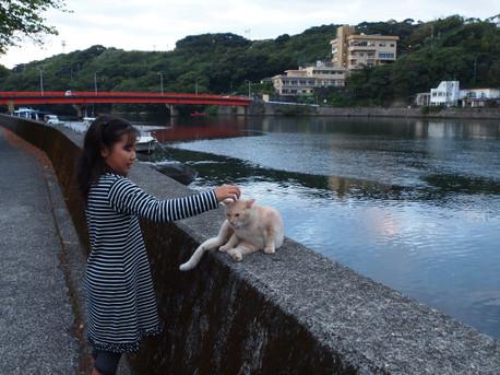 20121024yakushima5