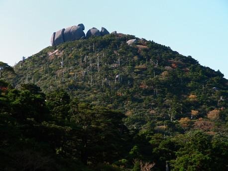 20121026yakushima5