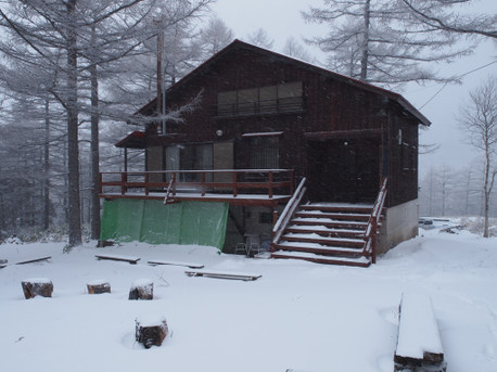 20121208nwvkoya
