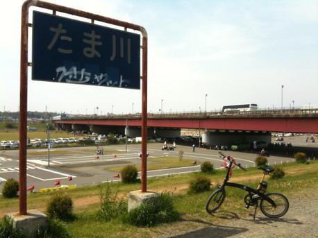 20130414tamagawa